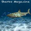 Sharks Magazine