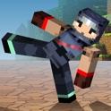 Block Fighter icon