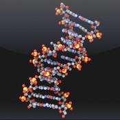 image for Molecules app