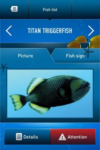 Dive Guide screenshot 4