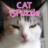 CAT15Puzzle
