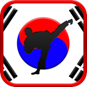 Tae Kwon Do Martial Arts icon