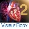 3D Heart & Circulatory Premium 2 (Cœur et système circulatoire Premium en 3D 2)