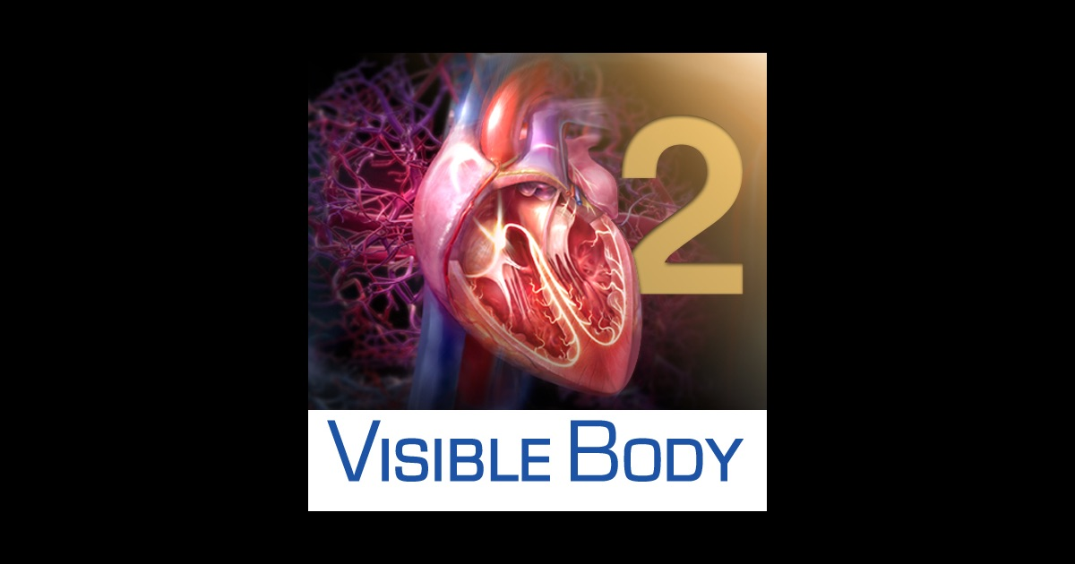 Visible Body Free Download Windows