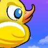 Crazy Duck Flying
