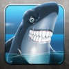 Angry squali - Angry Sharks, Free Shark Game