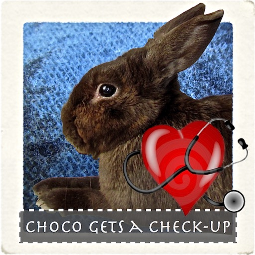 Choco Gets A Check Up