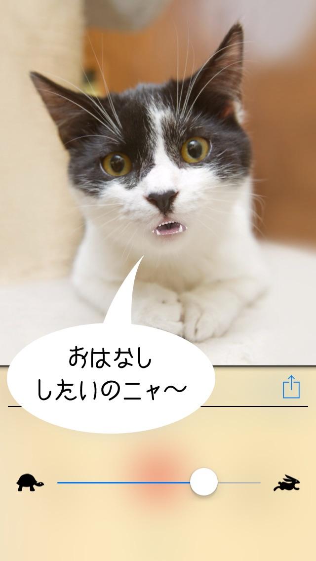おしゃべりどうぶつ3D screenshot1