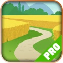 Game Pro - Story of Seasons Version icon