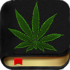 Marijuana Handbook HD - The Ultimate Medical Cannabis Guide With The Best of Edible, Ganja Strains, Weed Facts, Bud Slang and More! - Steven DeArmond