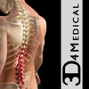 Orthopedic Patient Education - 3D4Medical.com, LLC