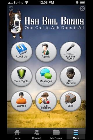Ash Bail Bonds screenshot 4