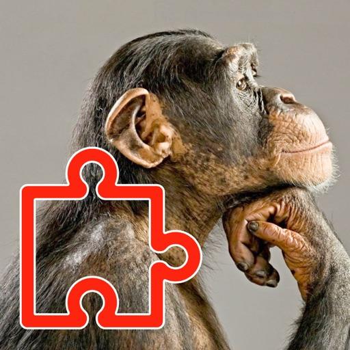 Puzzles Zoo Pro iOS App