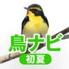 鳥ナビ~1年で120種類の野鳥と出会えるガイド・初夏編
