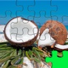 Jigsaw Puzzle Bright Tropical Images For Girls