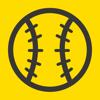 タイガース野球