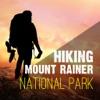 Hiking - Mount Rainer National Park