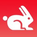 Rabbit「GoogleのPageSpeed「Webテストのため