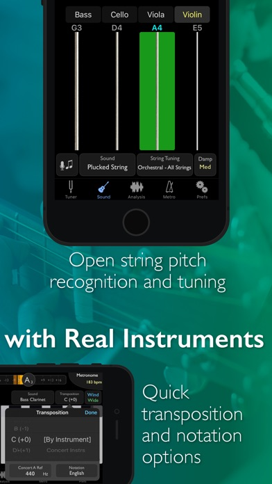 TonalEnergy Chromatic Tuner and Metronome  Screenshot