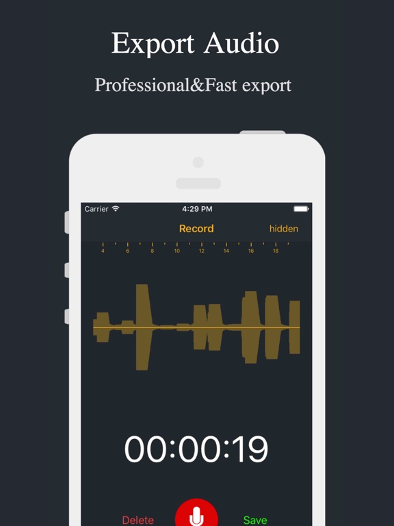 Screenshots of Audio Recorder - Voice Recorder for iPad