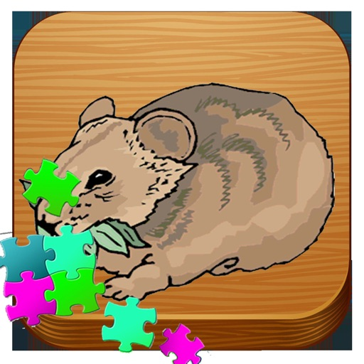Bear Animal Puzzle Animated For Toddlers By Harutai Khaikaew