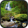Forests & Waterfalls SMART Guide