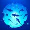 Underwater world - Fishing sea fishing Sea