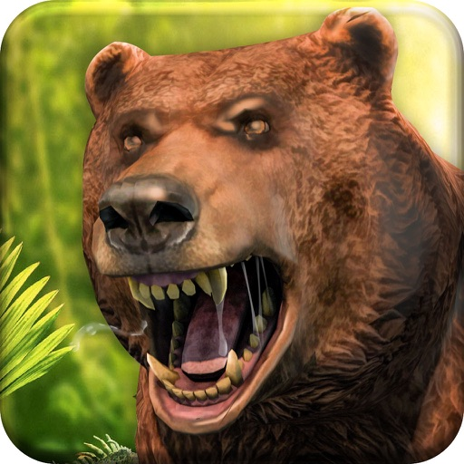 Bear Jungle Attack images