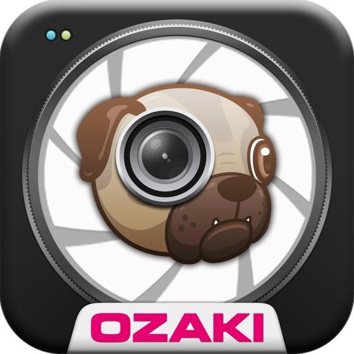 O!DogCam