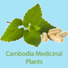 ANT Khmer Medicinal Plants F Wiki