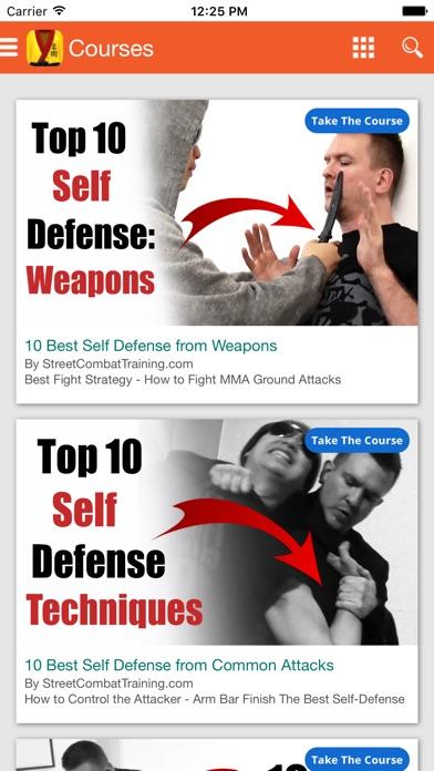 総合格闘技 柔術 自己防衛のおすすめ画像3