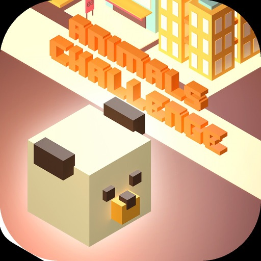 Amazing Bear - Tiny Animal Run iOS App