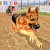 Dog Stunt Jump Training Simulator 3D
