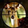 Sniper Deer Hunter 2017 Wiki