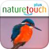 Vogelstimmen live erkennen, naturetouch