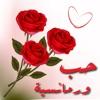 صور حب و رومانسية