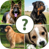 Pups Pet Trivia – The Dog Lovers Quiz Pro Wiki