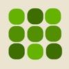 Green Memory - Brain Training memory