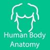 Organs of human body