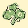 harVie - Gemüse selber anbauen