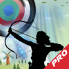A Good Archery PRO : Classic Punter Game Wiki