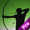 A Hunter Future With Arrow PRO Wiki