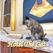 脱出ゲーム Hotel The Cat -スイートルームからの脱出-