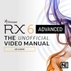 Manual for RX 6 Advanced