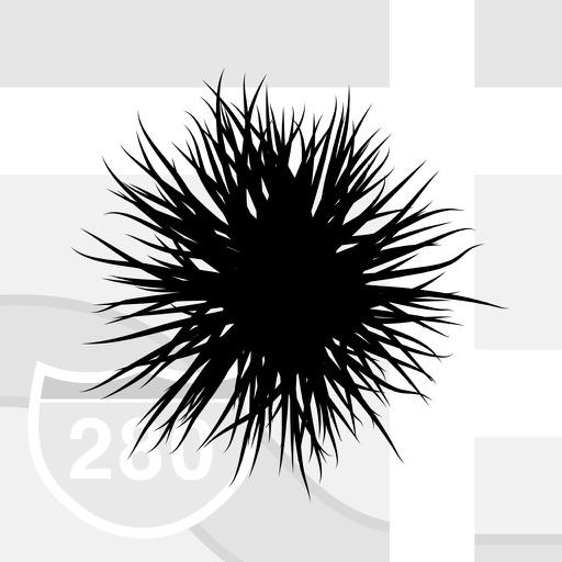 Plag — Informationsnetzwerk