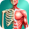 Anatomia Humana 3D - Biologia
