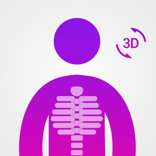 Anatomía Fácil :Aprender Músculos Esqueleto Huesos Por El monfi Nezha