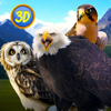 Wild Bird Survival Simulator Full Wiki