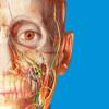 Atlas d'anatomie humaine Édition 2018