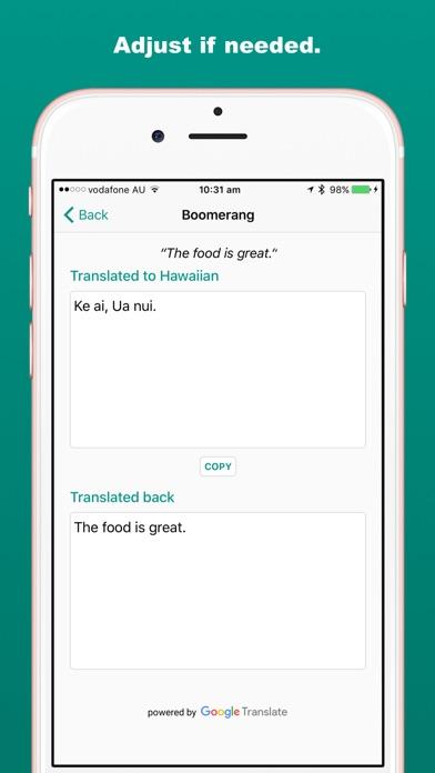 Boomerang: Double-check Translations Screenshot